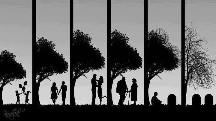 stages of living
